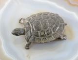 Schildkröte, Bronze