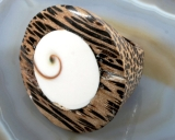 Shiva Auge und Holz, Ring