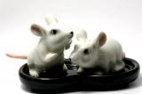 Ratten, Salz- und Pfefferstreuer aus Porzellan