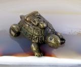 Buddha auf der Schildkröte,Bronze